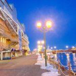 「フィッシャーマンズワーフ」施設から考える浦安観光活性の在り方