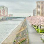 桜舞い散る浦安と日本の心