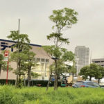 利便性が高まっている新浦安の商業施設